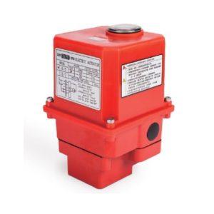 actionari-electrice-r10