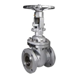 robineti-sertar-ansi-150